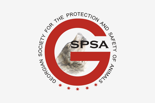 Letter of the chairman of the board of GSPSA to the Mayor of Tbilisi regarding the International Animal Protection day